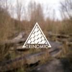 Trinomic Flugplatz